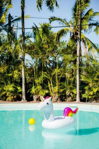 bouée licorne au milieu de la piscine